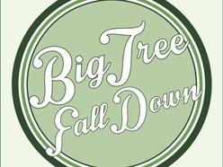 Image for Big Tree Fall Down