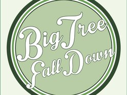 Image for Big Tree Fall Down
