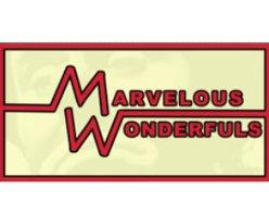 Image for The Marvelous Wonderfuls