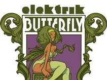 Russell Gunn & Elektrik Butterfly