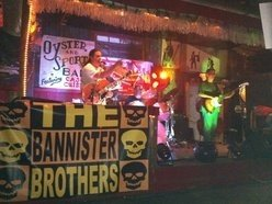 Image for The Bannister Brothers