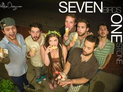 Image for Seven Birds One Stone
