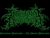 Intestinal Dissection