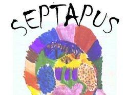 Septapus