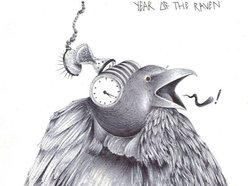 Image for Year of the Raven