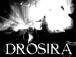 Image for Drosira