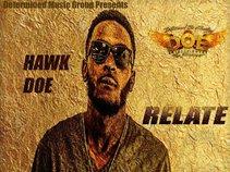 Hawk DOE