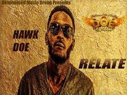 Image for Hawk DOE