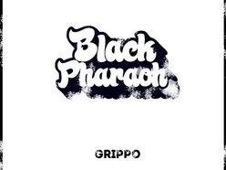 Image for Black Pharaoh