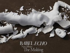 Image for Babel Echo