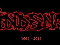 MIND SNARE (1993 - 2011)