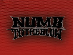 Image for Numb to the Blow