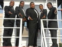 The Nite Life Band