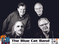 The Blue Cat Band