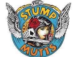 The Stump Mutts