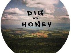 Image for Dig for Honey