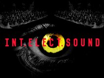 Int.Elect.Sound