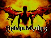 Animal Mother