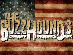 Image for The Buzzhounds