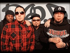 Image for P.O.D.