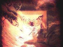 Phoenix Mostart