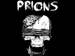 Image for PRIONS