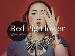Image for Red pig flower