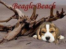 Beagle Beach