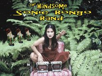 Handsome Sonic Bongo Band
