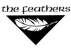 Image for The Feathers UK
