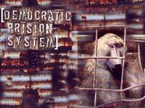 Democratic Prision System