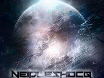 NeidleShocQ