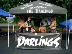 Image for The Darlings
