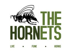 Image for THE HORNETS