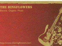 The  Ringflowers