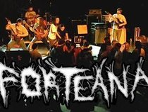 Forteana Band