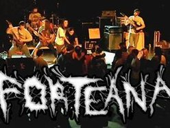 Image for Forteana Band