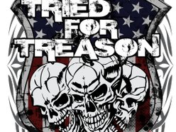 Image for Tried For Treason