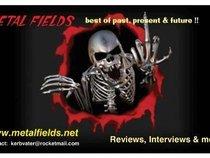 Metal Fields