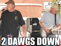 Image for 2 Dawgs Down