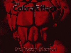 Image for The Cobra Effect