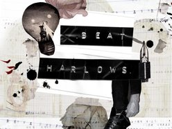 Beat Harlows