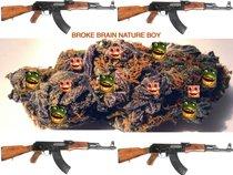 /BROKE BRAIN/NATURE BOY/