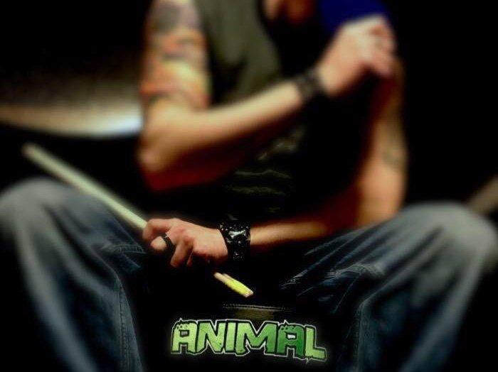 Image for Adam Animal Drumz