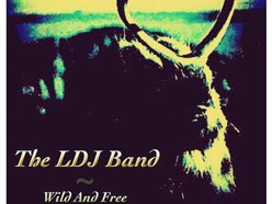 Image for The LDJ Band