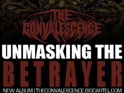Image for The Convalescence