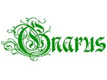 Gnarus