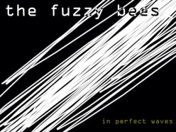 Image for The Fuzzy Bees