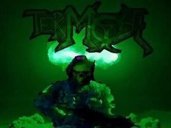 Image for Termoil