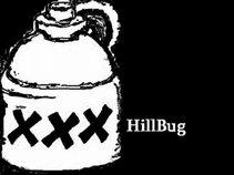 HillBug